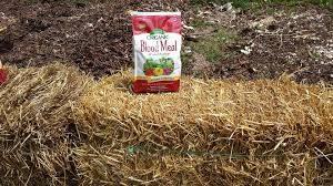 haybale fertilizing